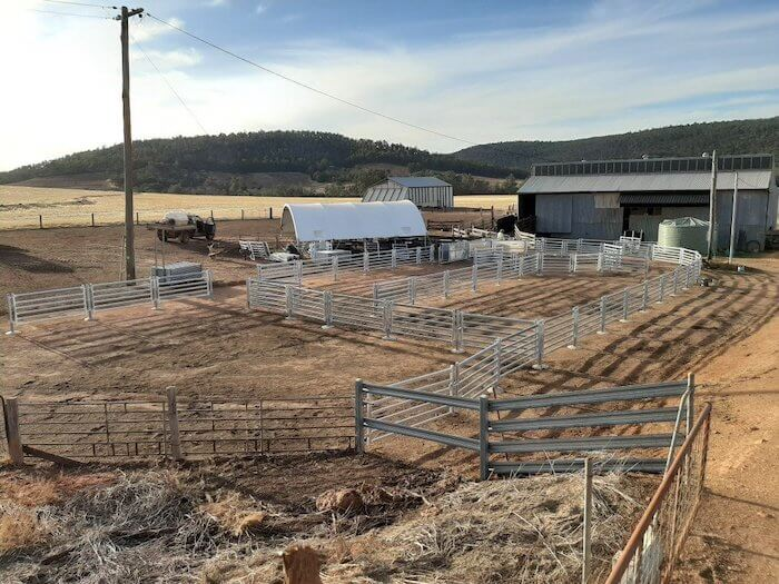 Permanent sheep yards 02