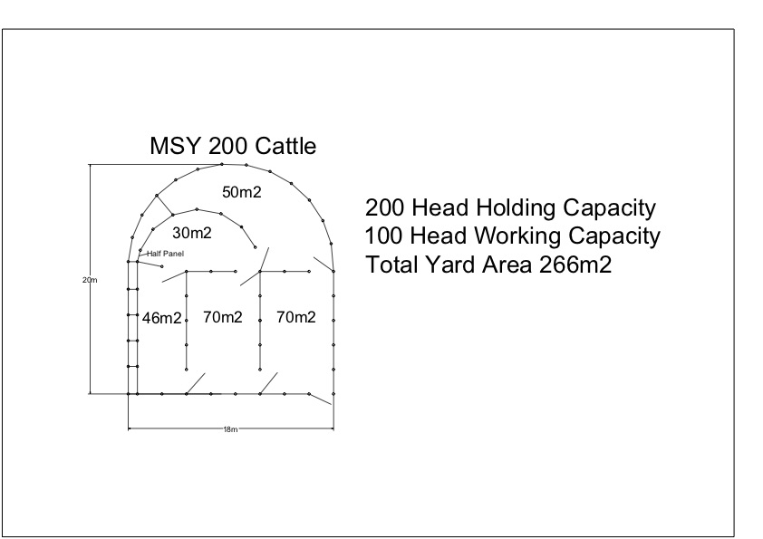 MSYC 200 Cattle